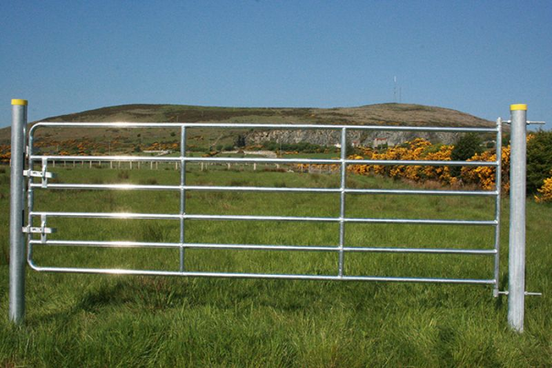 Heavy Galvanised D6 Gate Products For Agricultural