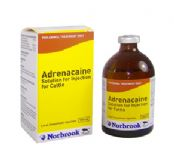 Adrenacaine Solution for Injection for Cattle
