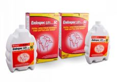 Endospec 10% w/v Oral Suspension